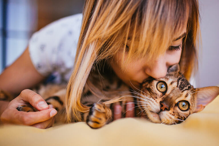 How do you get rid of cat allergies?