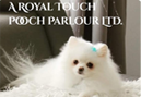 A Royal Touch Pooch Parlour, a quirkly little Pet Styling Salon in Tuxedo Park, Calgary. Beautifying Pooches since 1994!